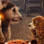 犬好き必聴JanelleMonáeが歌うThat'sEnough身も心もわんわん物語