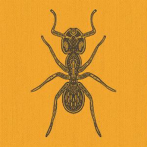 Vidaが素敵なHermanoHormigaアルゼンチンのアコースティック蟻兄弟